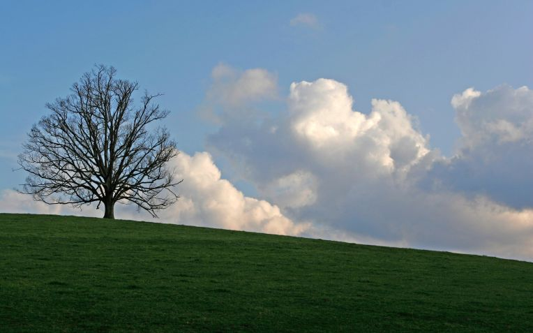 Picture of sunset, Cotswolds, England March 2005